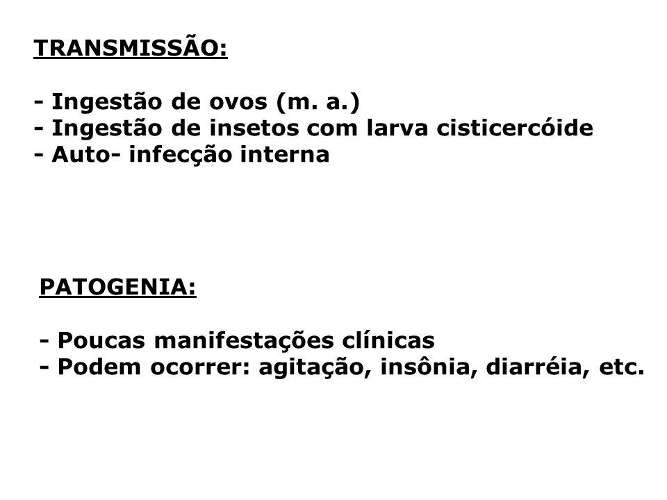 TRANSMISSÃO:- Ingestão de ovos (m. a.) - Ingestão de insetos com larva cisticercóide. - Auto- infecção interna.