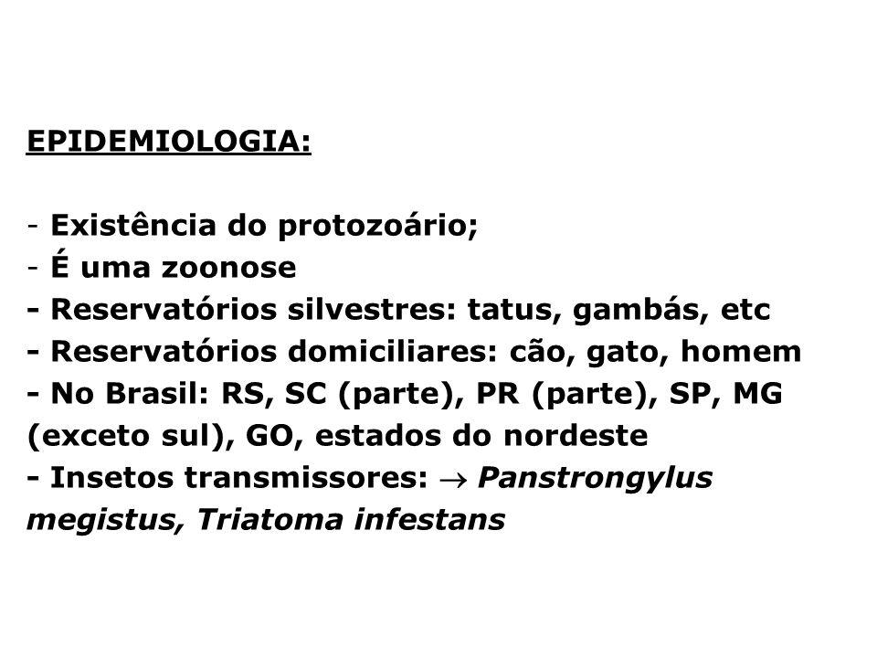 EPIDEMIOLOGIA: Existência do protozoário; É uma zoonose. - Reservatórios silvestres: tatus, gambás, etc.