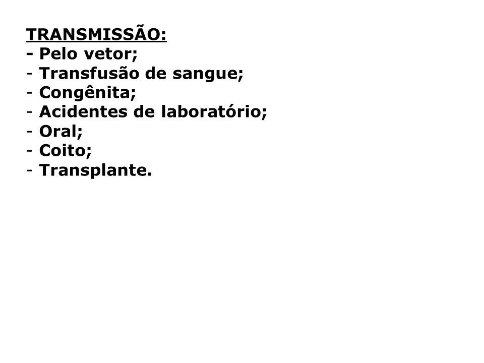 TRANSMISSÃO: - Pelo vetor; Transfusão de sangue; Congênita; Acidentes de laboratório; Oral; Coito;