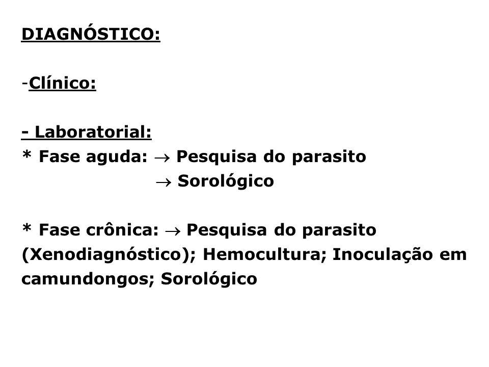 DIAGNÓSTICO: Clínico: - Laboratorial: * Fase aguda:  Pesquisa do parasito.  Sorológico.