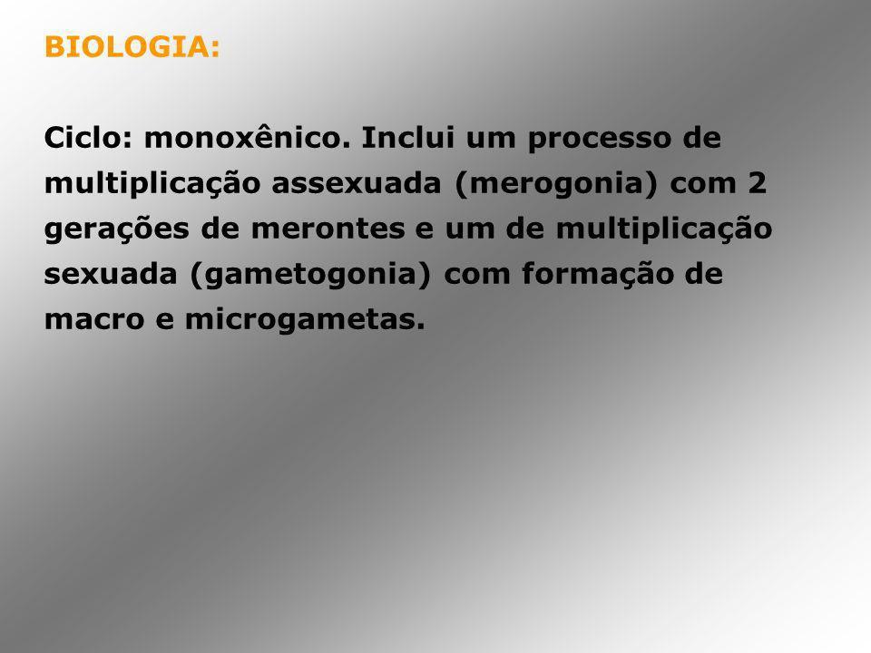 BIOLOGIA: