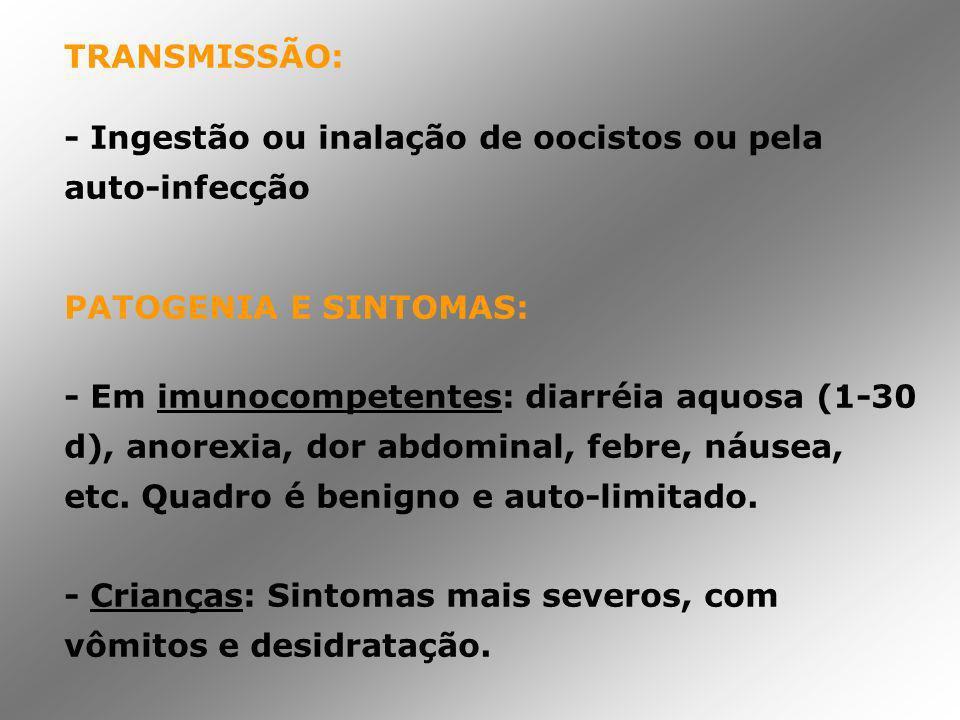 TRANSMISSÃO: - Ingestão ou inalação de oocistos ou pela auto-infecção. PATOGENIA E SINTOMAS: