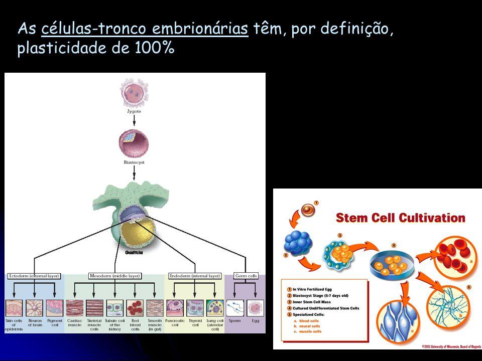 As células-tronco embrionárias têm, por definição, plasticidade de 100%