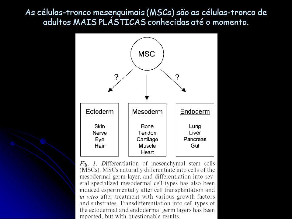 As células-tronco mesenquimais (MSCs) são as células-tronco de adultos MAIS PLÁSTICAS conhecidas até o momento.
