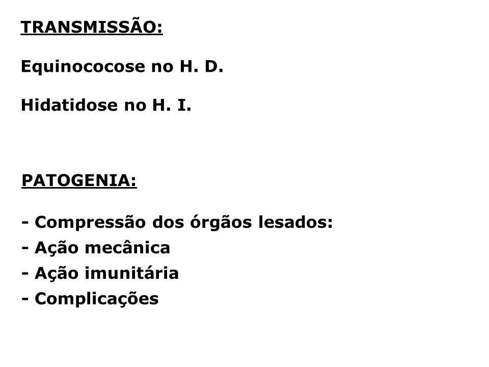 TRANSMISSÃO: Equinococose no H. D. Hidatidose no H. I. PATOGENIA: - Compressão dos órgãos lesados:
