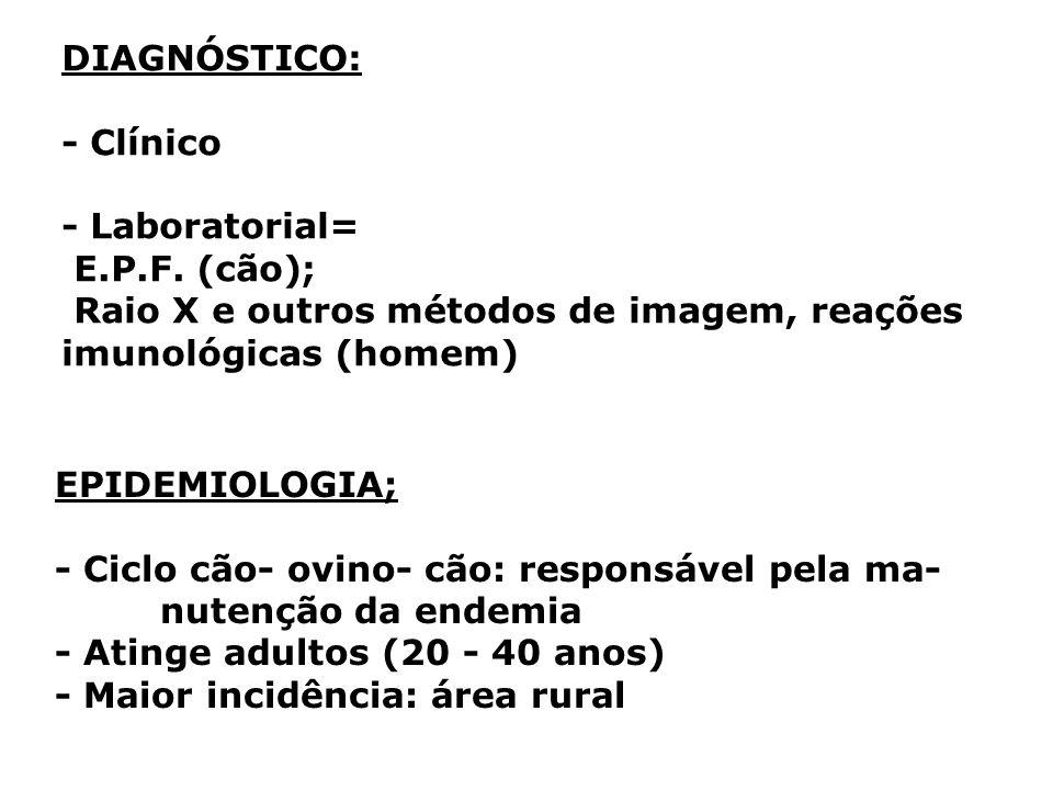 DIAGNÓSTICO: - Clínico. - Laboratorial= E.P.F. (cão); Raio X e outros métodos de imagem, reações imunológicas (homem)