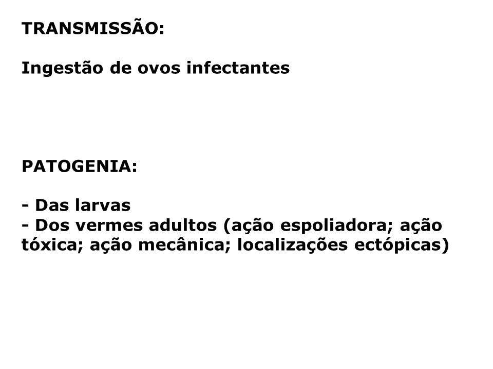 TRANSMISSÃO: Ingestão de ovos infectantes. PATOGENIA: - Das larvas.