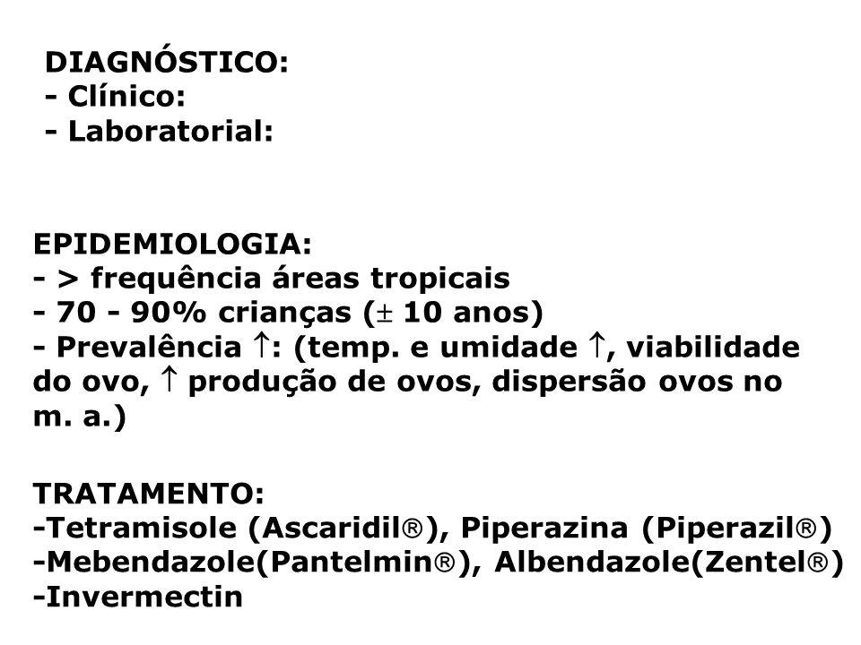 DIAGNÓSTICO: - Clínico: - Laboratorial: EPIDEMIOLOGIA: - > frequência áreas tropicais. - 70 - 90% crianças ( 10 anos)