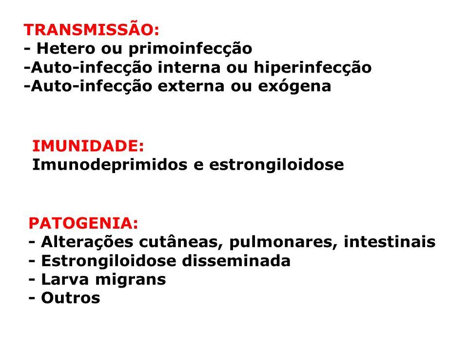 TRANSMISSÃO: - Hetero ou primoinfecção. -Auto-infecção interna ou hiperinfecção. -Auto-infecção externa ou exógena.