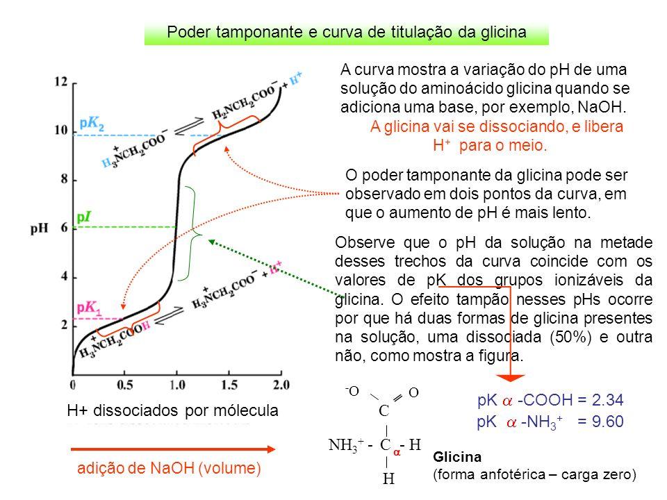Poder tamponante e curva de titulação da glicina