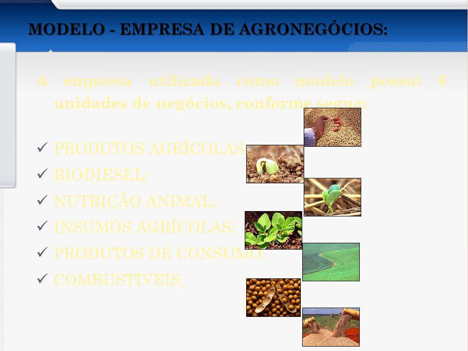 MODELO - EMPRESA DE AGRONEGÓCIOS: