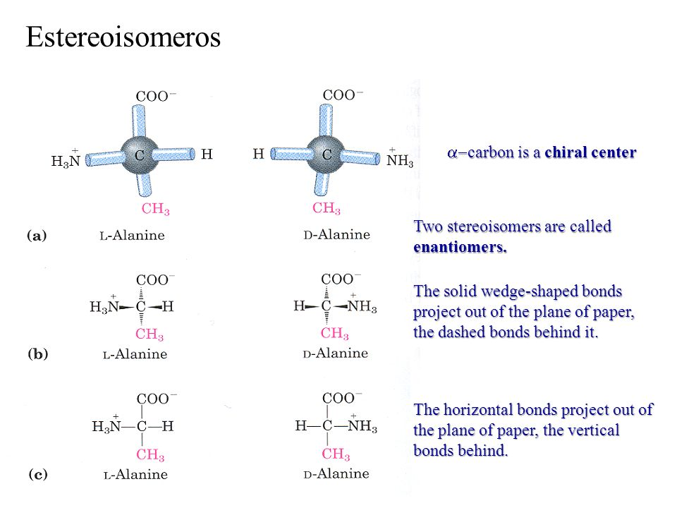 Estereoisomeros a-carbon is a chiral center