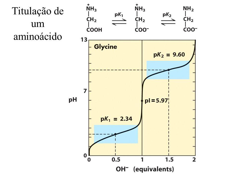 Titulação de um aminoácido