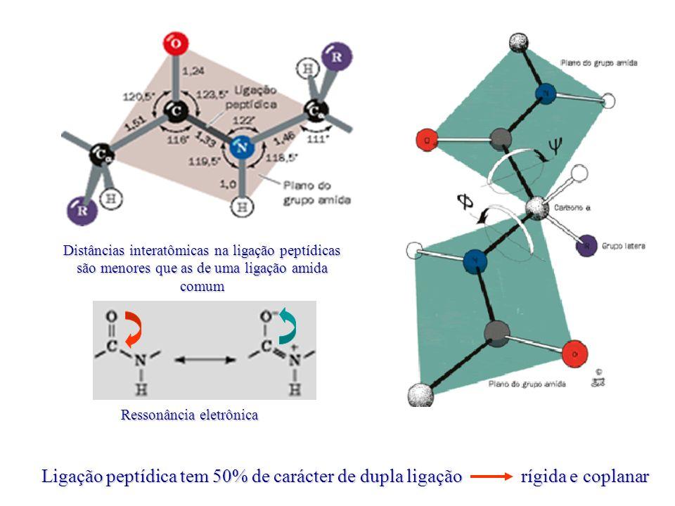 Distâncias interatômicas na ligação peptídicas são menores que as de uma ligação amida comum