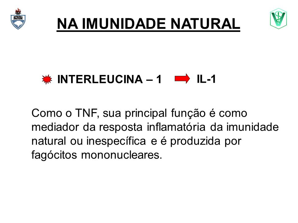 NA IMUNIDADE NATURAL INTERLEUCINA – 1 IL-1