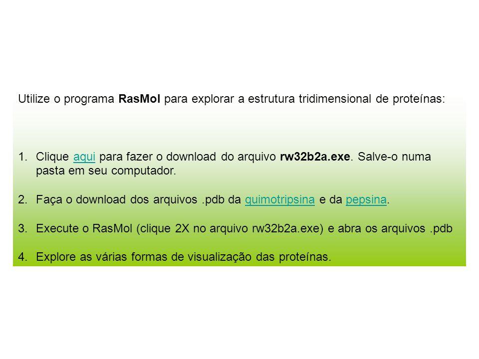 Utilize o programa RasMol para explorar a estrutura tridimensional de proteínas: