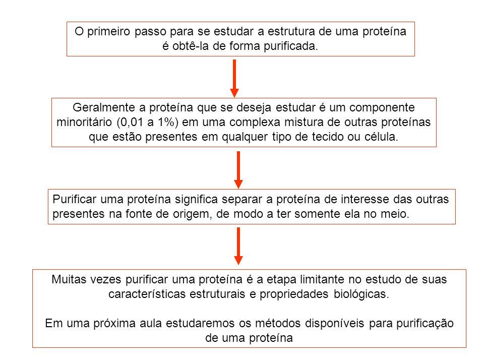 O primeiro passo para se estudar a estrutura de uma proteína é obtê-la de forma purificada.
