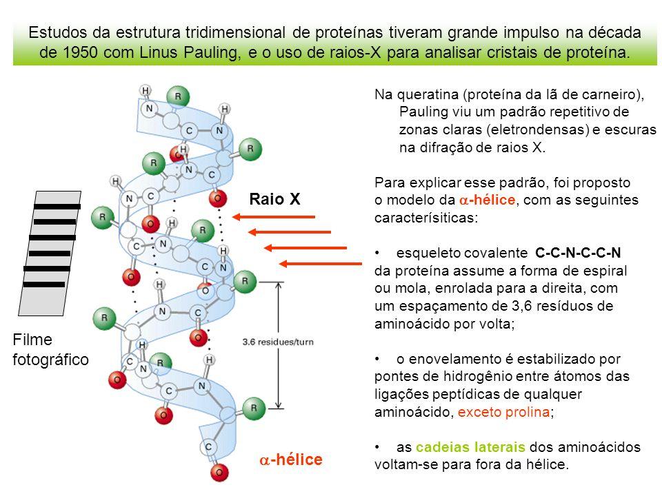 Estudos da estrutura tridimensional de proteínas tiveram grande impulso na década de 1950 com Linus Pauling, e o uso de raios-X para analisar cristais de proteína.