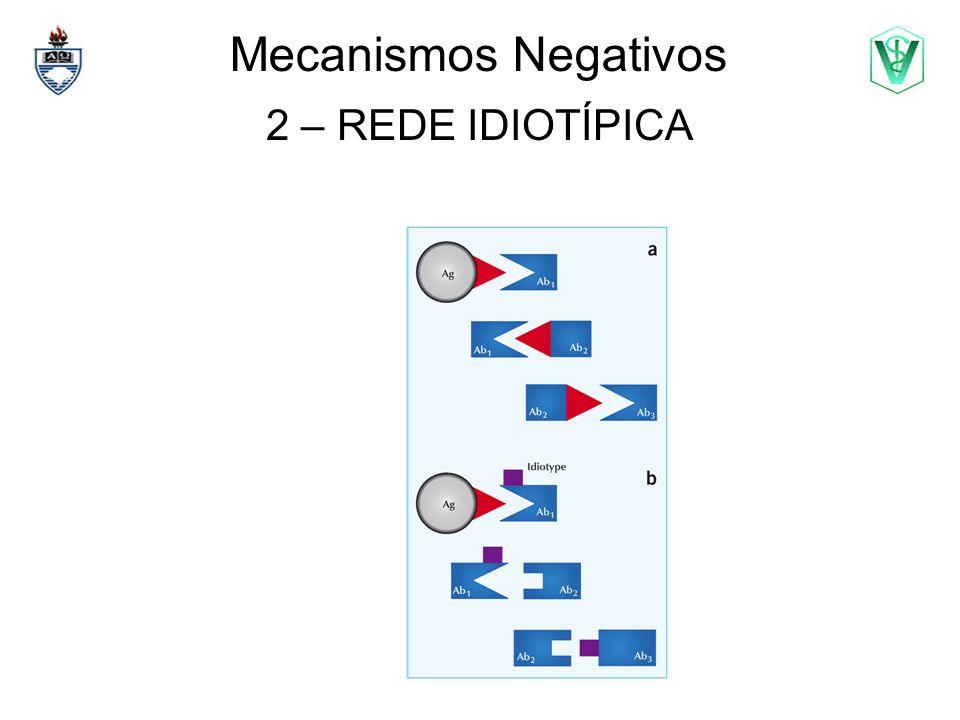 Mecanismos Negativos 2 – REDE IDIOTÍPICA