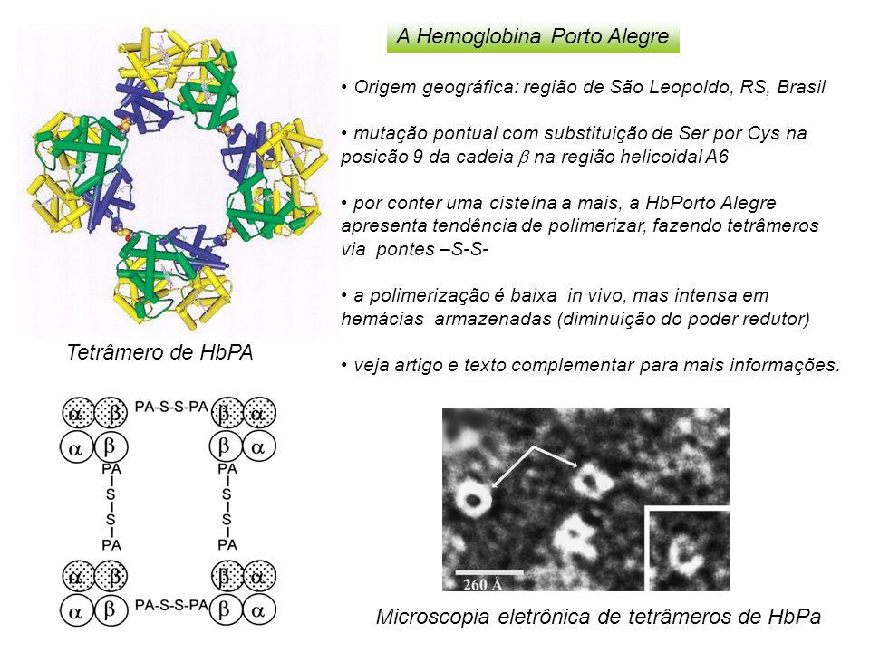A Hemoglobina Porto Alegre