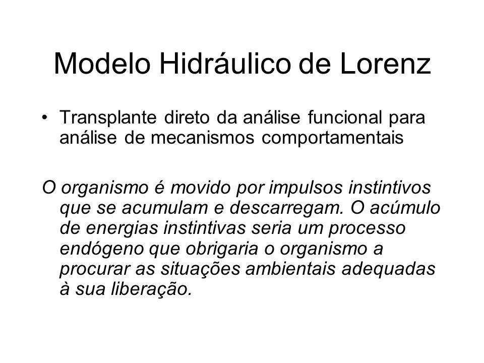 Modelo Hidráulico de Lorenz