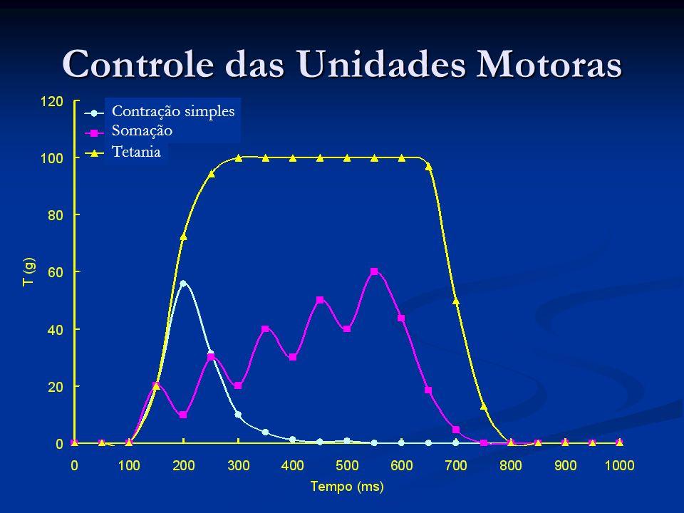Controle das Unidades Motoras
