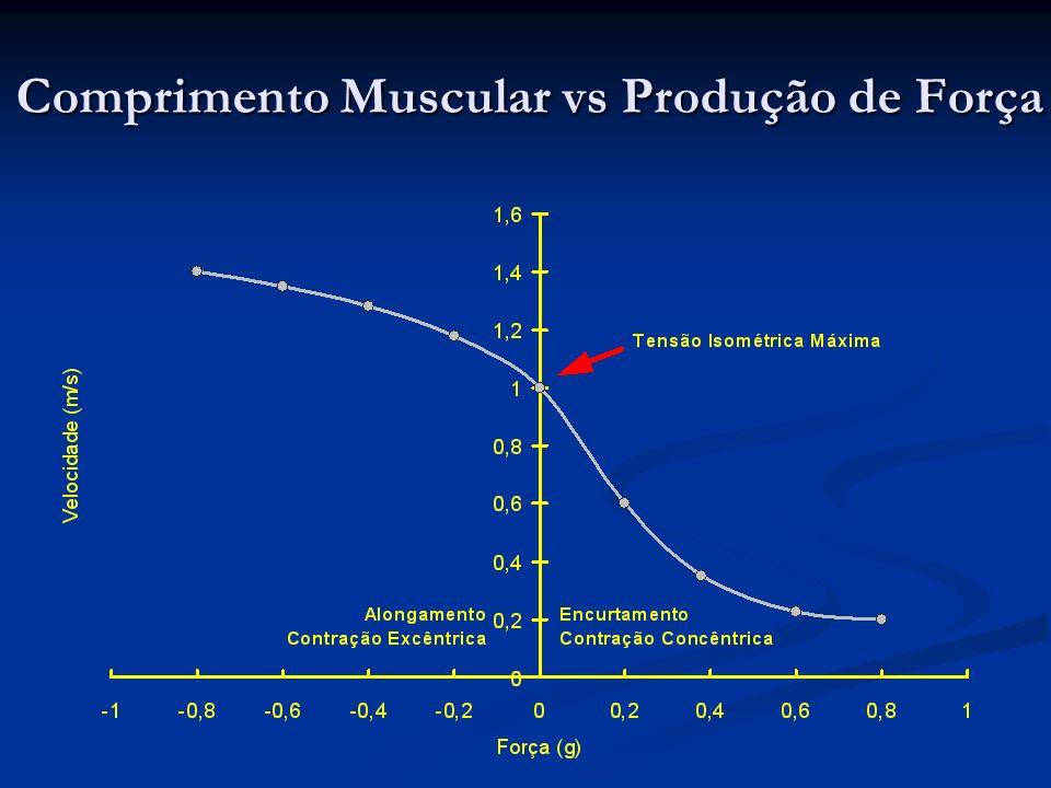 Comprimento Muscular vs Produção de Força