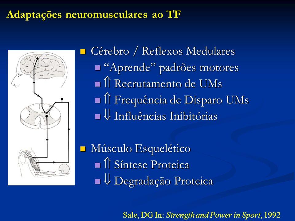 Cérebro / Reflexos Medulares Aprende padrões motores