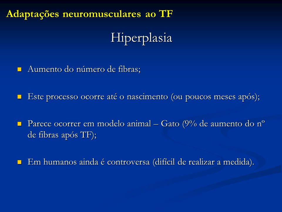 Hiperplasia Adaptações neuromusculares ao TF