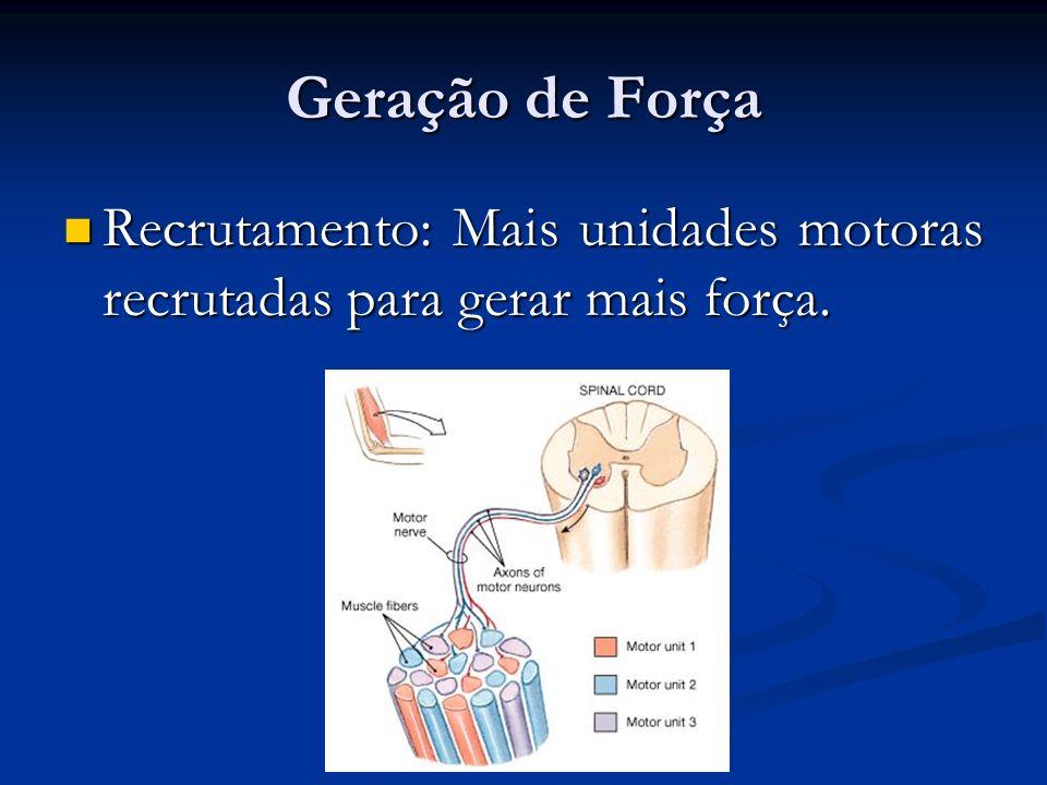 Geração de Força Recrutamento: Mais unidades motoras recrutadas para gerar mais força.