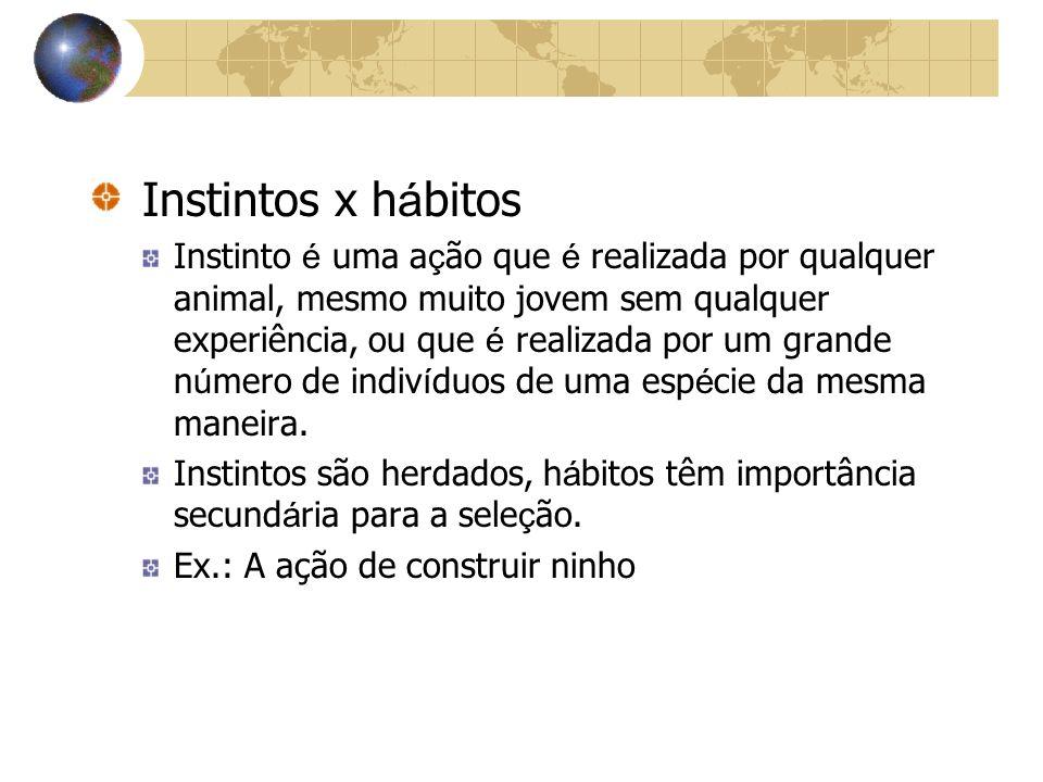Instintos x hábitos