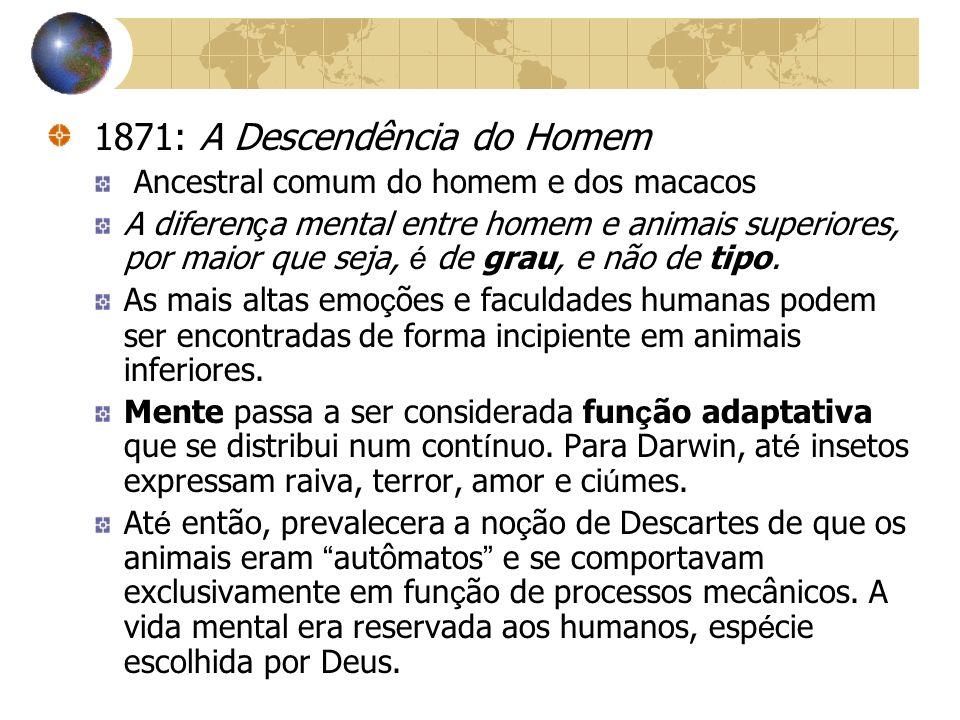 1871: A Descendência do Homem
