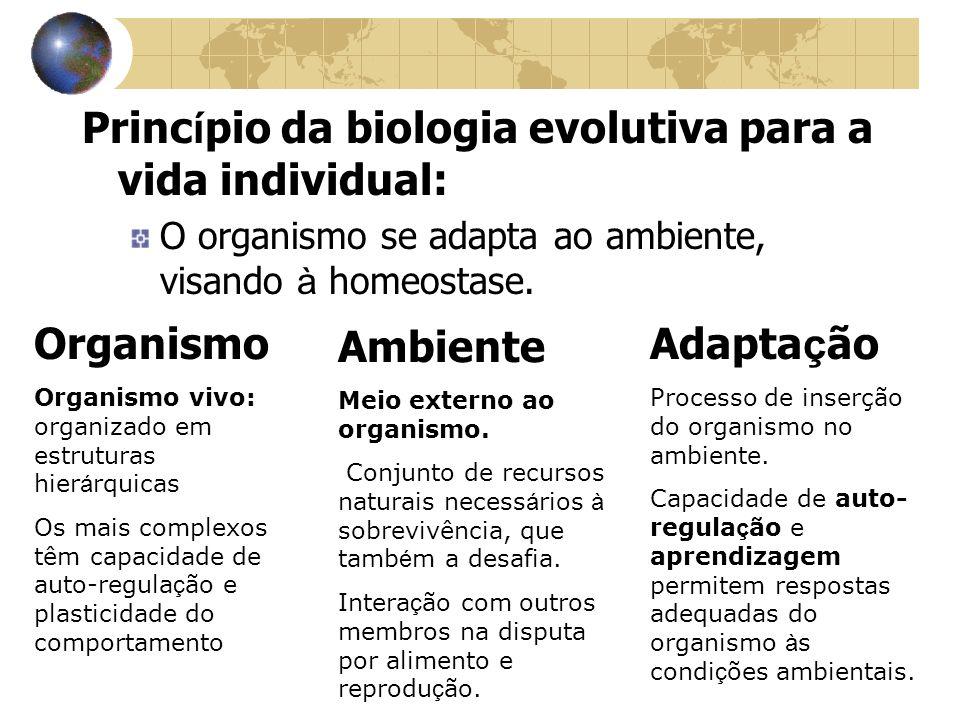 Princípio da biologia evolutiva para a vida individual: