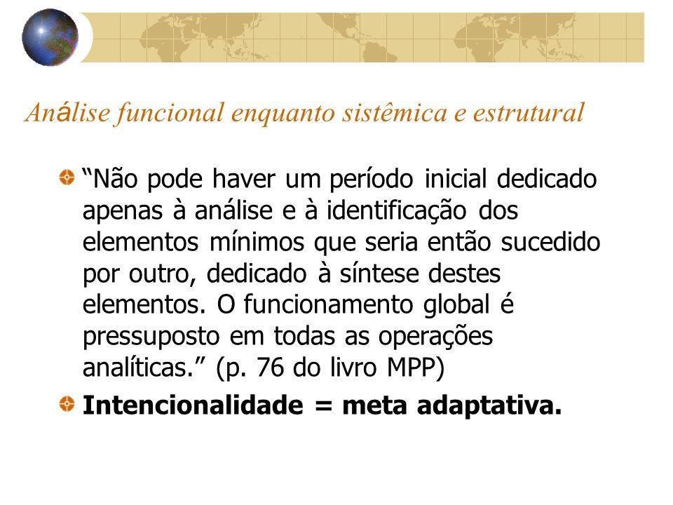 Análise funcional enquanto sistêmica e estrutural