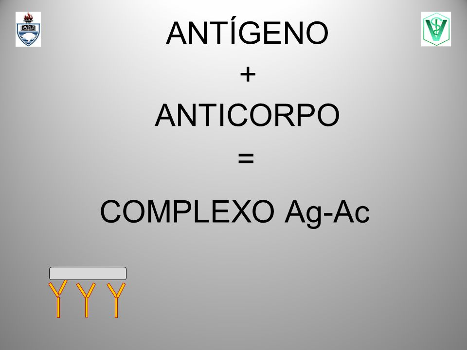 ANTÍGENO + ANTICORPO = COMPLEXO Ag-Ac