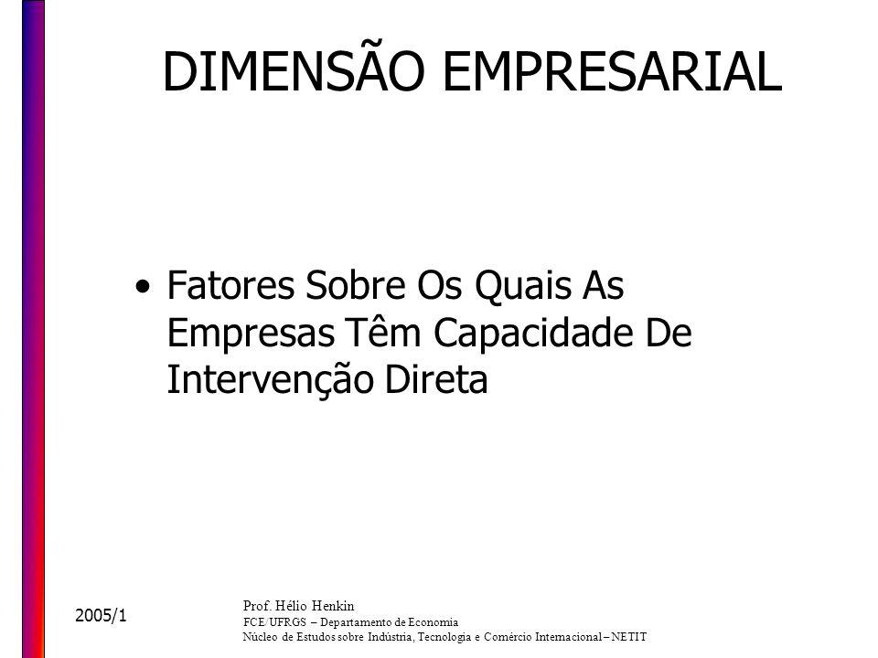 DIMENSÃO EMPRESARIAL Fatores Sobre Os Quais As Empresas Têm Capacidade De Intervenção Direta. Prof. Hélio Henkin.