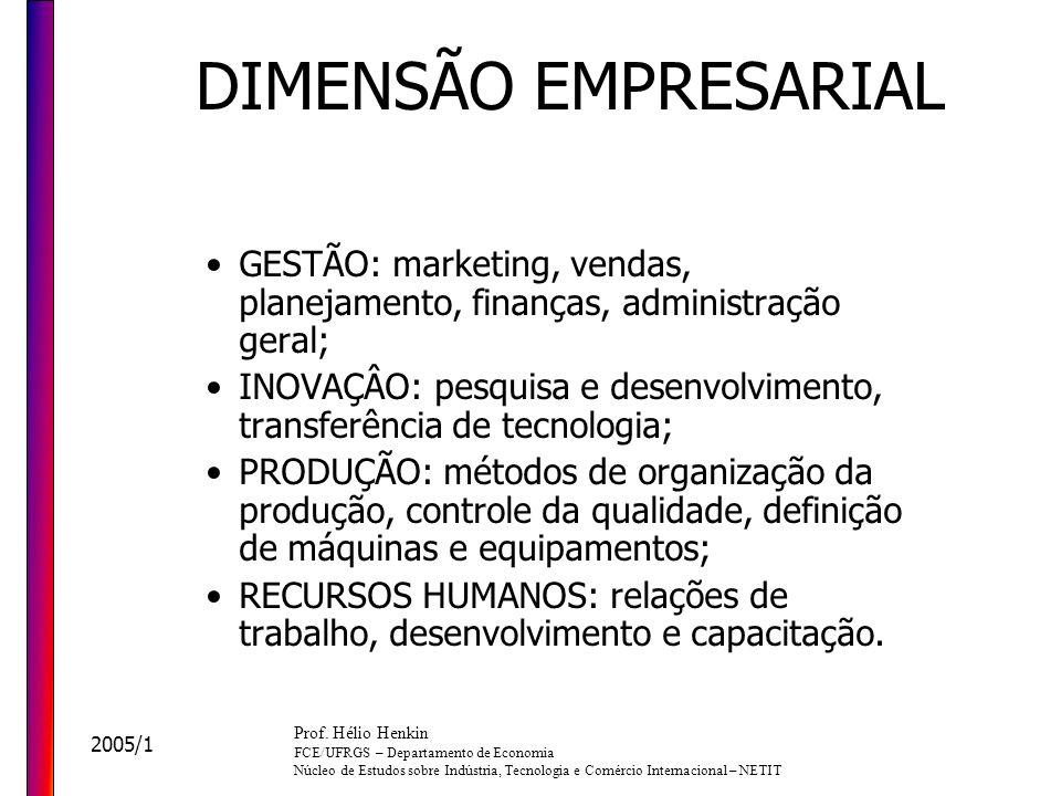 DIMENSÃO EMPRESARIAL GESTÃO: marketing, vendas, planejamento, finanças, administração geral;