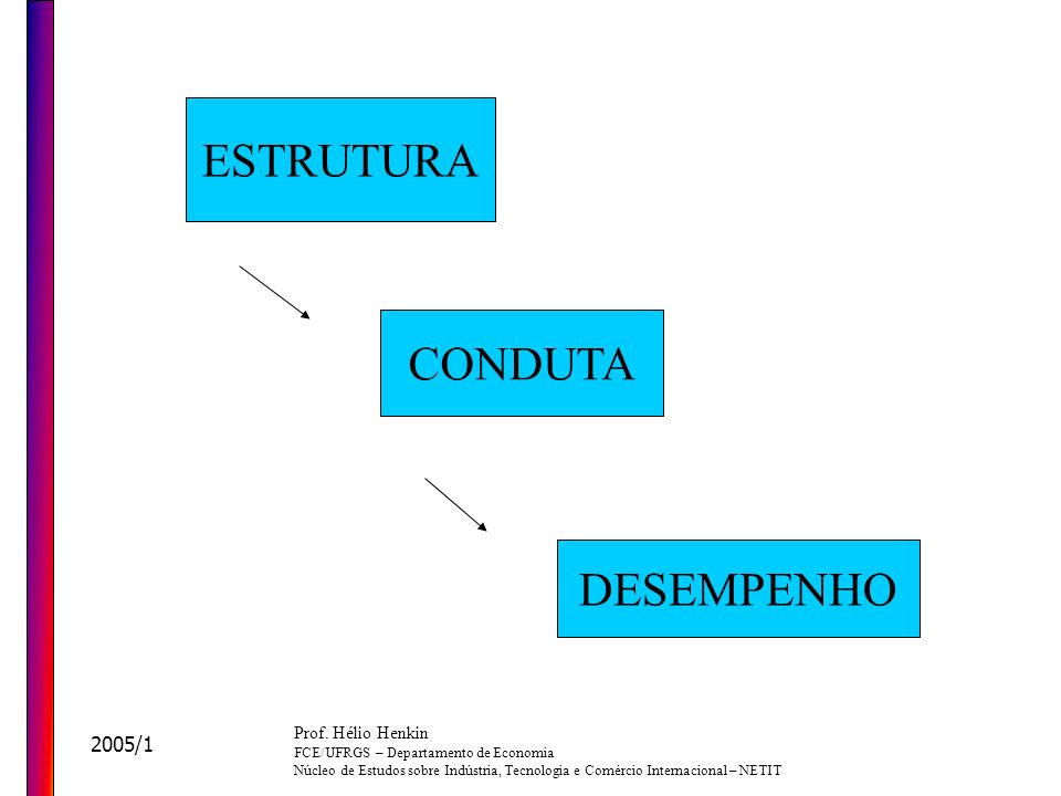 ESTRUTURA CONDUTA DESEMPENHO 2005/1 Prof. Hélio Henkin