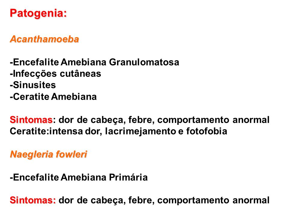 Patogenia: Acanthamoeba -Encefalite Amebiana Granulomatosa