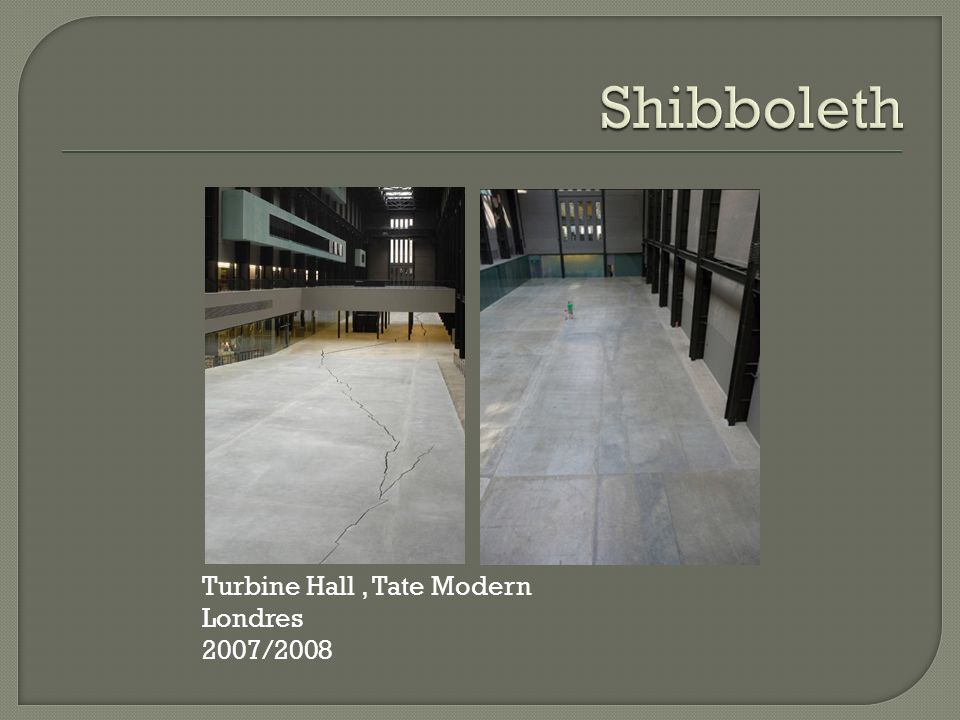 Shibboleth Turbine Hall , Tate Modern Londres 2007/2008