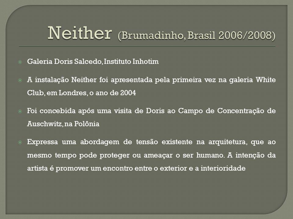 Neither (Brumadinho, Brasil 2006/2008)
