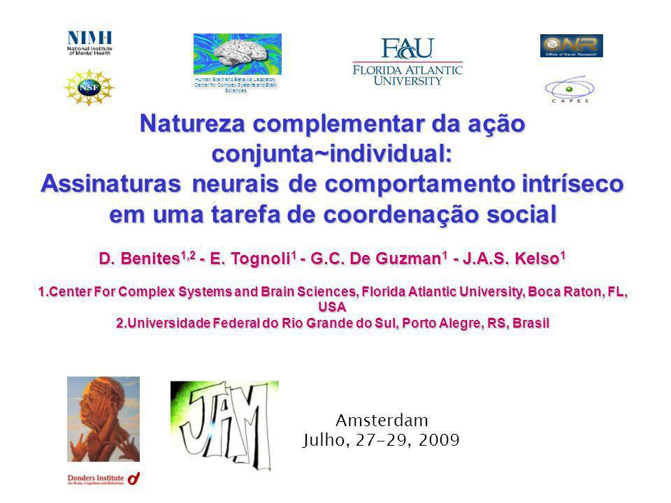Natureza complementar da ação conjunta~individual: