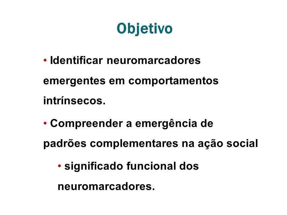 Objetivo Identificar neuromarcadores emergentes em comportamentos intrínsecos. Compreender a emergência de padrões complementares na ação social.