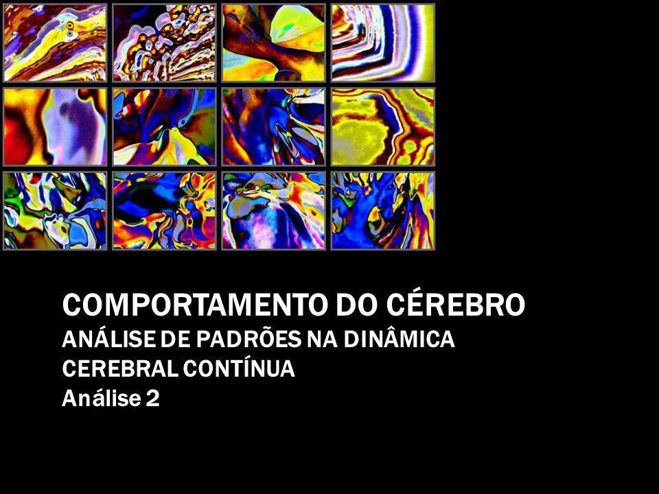 COMPORTAMENTO DO CÉREBRO ANÁLISE DE PADRÕES NA DINÂMICA CEREBRAL CONTÍNUA Análise 2