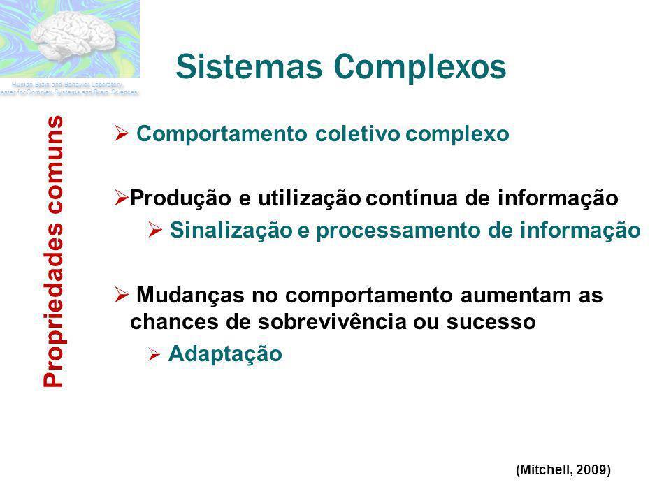 Sistemas Complexos Propriedades comuns Comportamento coletivo complexo
