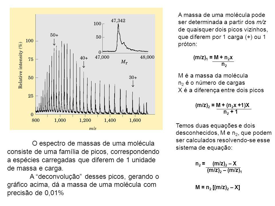 A massa de uma molécula pode ser determinada a partir dos m/z de quaisquer dois picos vizinhos, que diferem por 1 carga (+) ou 1 próton: