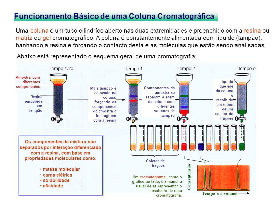 Funcionamento Básico de uma Coluna Cromatográfica