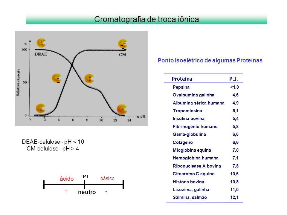- Cromatografia de troca iônica + -