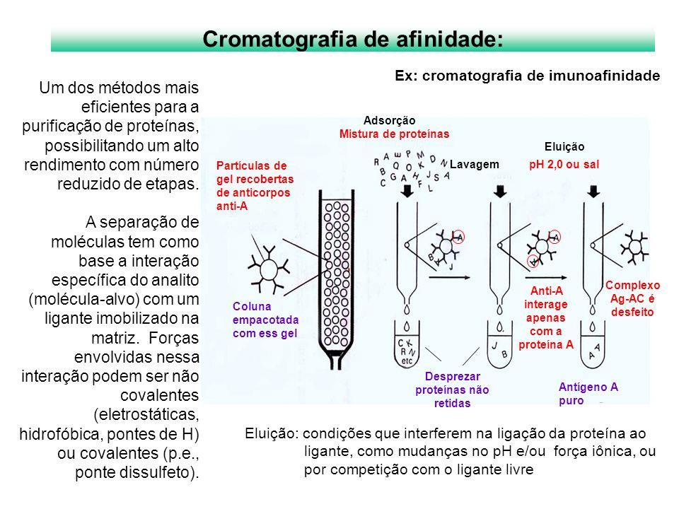 Cromatografia de afinidade:
