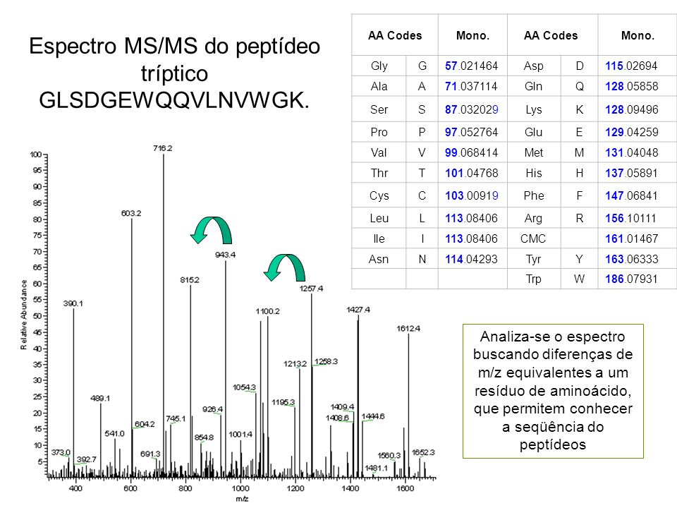 Espectro MS/MS do peptídeo tríptico GLSDGEWQQVLNVWGK.